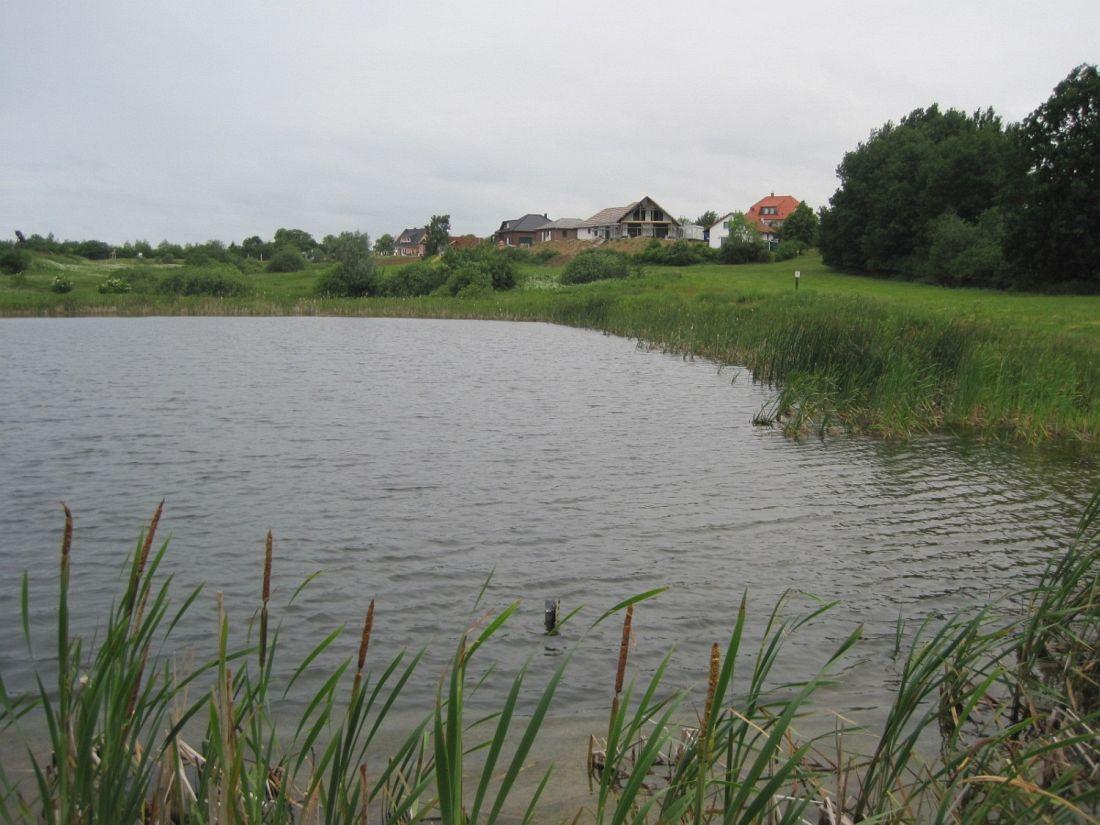 Naturnahes Gewässer Feriendorf Marlow 2008