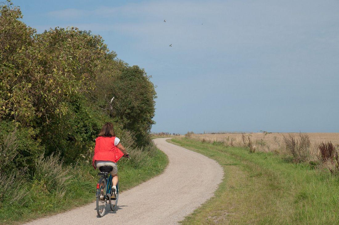 Ostseeradweg Abschnitt Boergerende